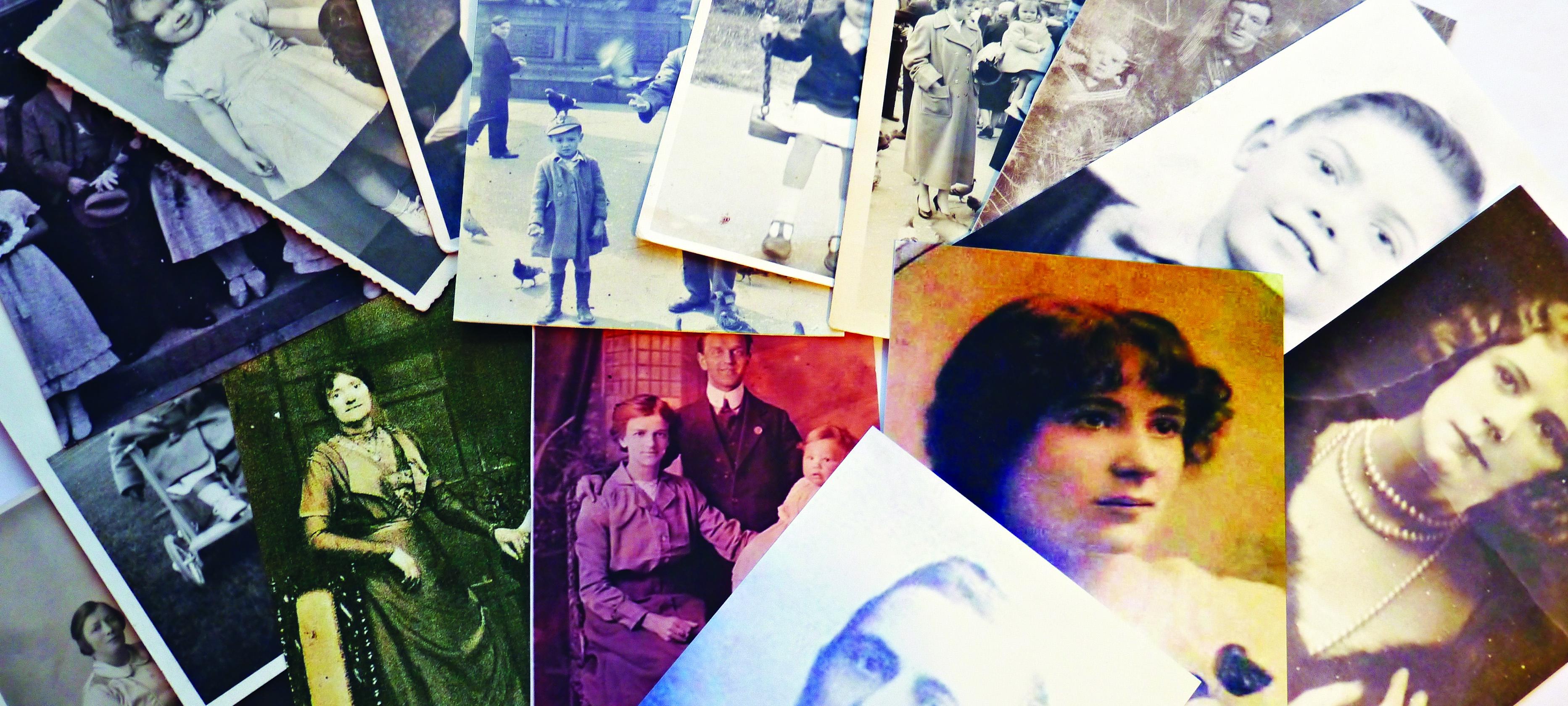 banner-genealogy